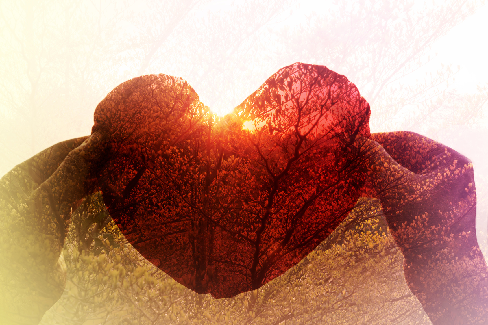 Abstract background hand take red heart in sunset twilight colour and tree bush background for condept idea of love or tree and nature preserve